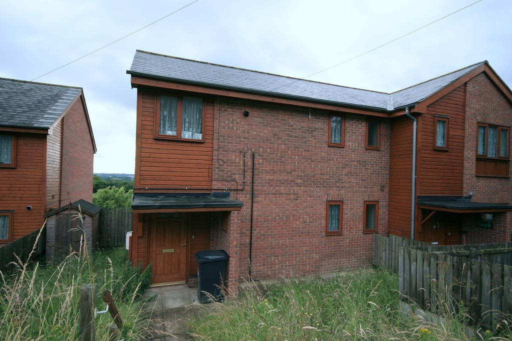 2 Bedrooms Semi Detached House for sale in Catherine Road, Burngreave, Sheffield S4