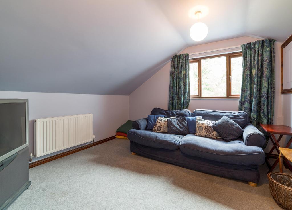 Bedroom/TV Lounge
