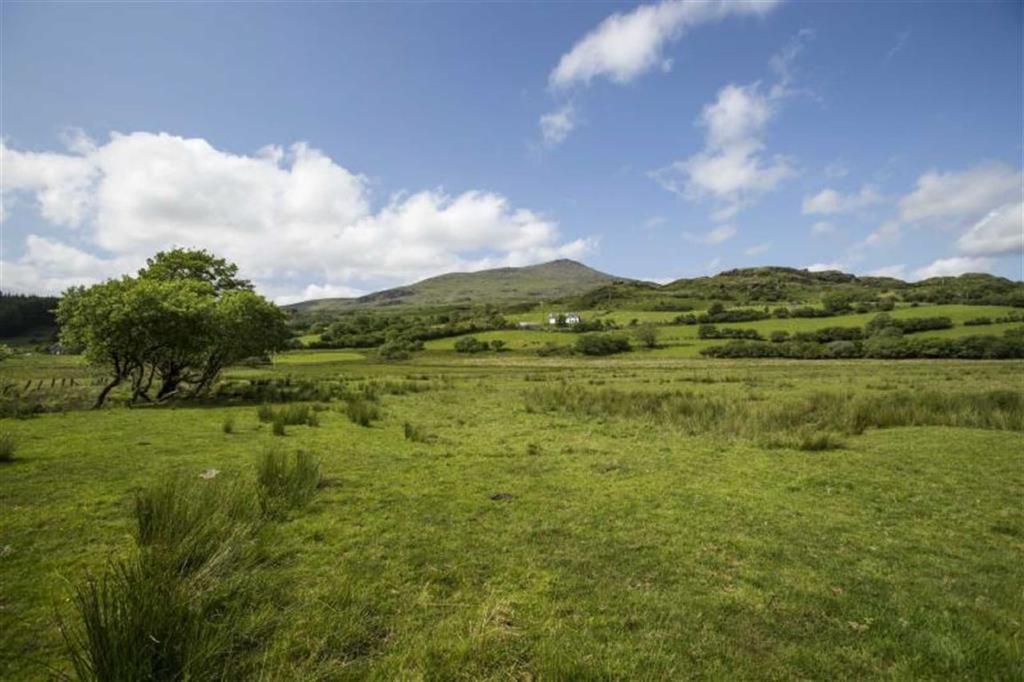 Land Commercial for sale in Dolwyddelan
