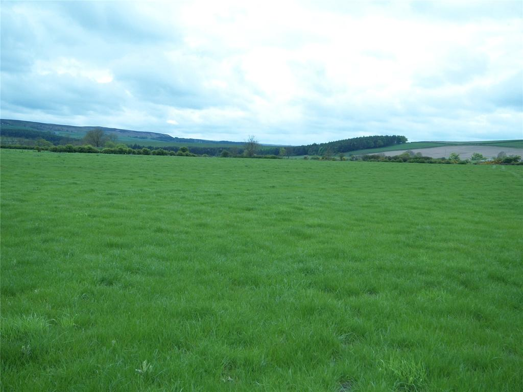 Land Commercial for sale in Carterway Heads, Consett, County Durham, DH8