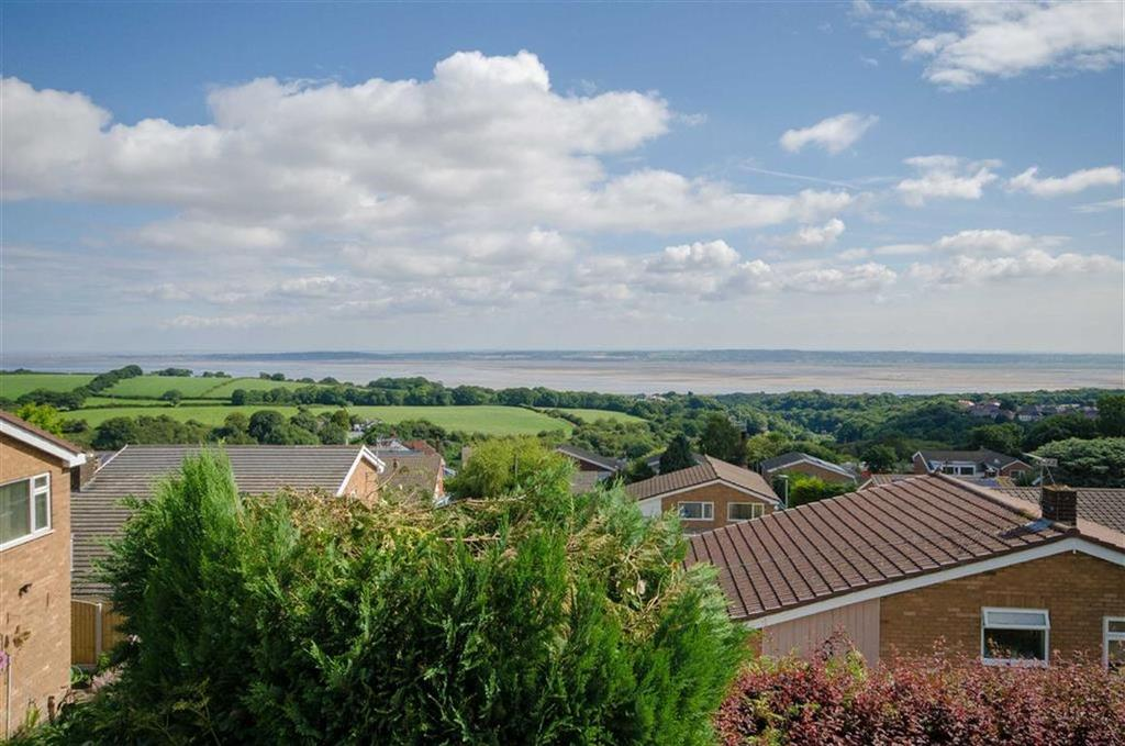4 Bedrooms Detached House for sale in Wedgewood Heights, Holywell, Holywell