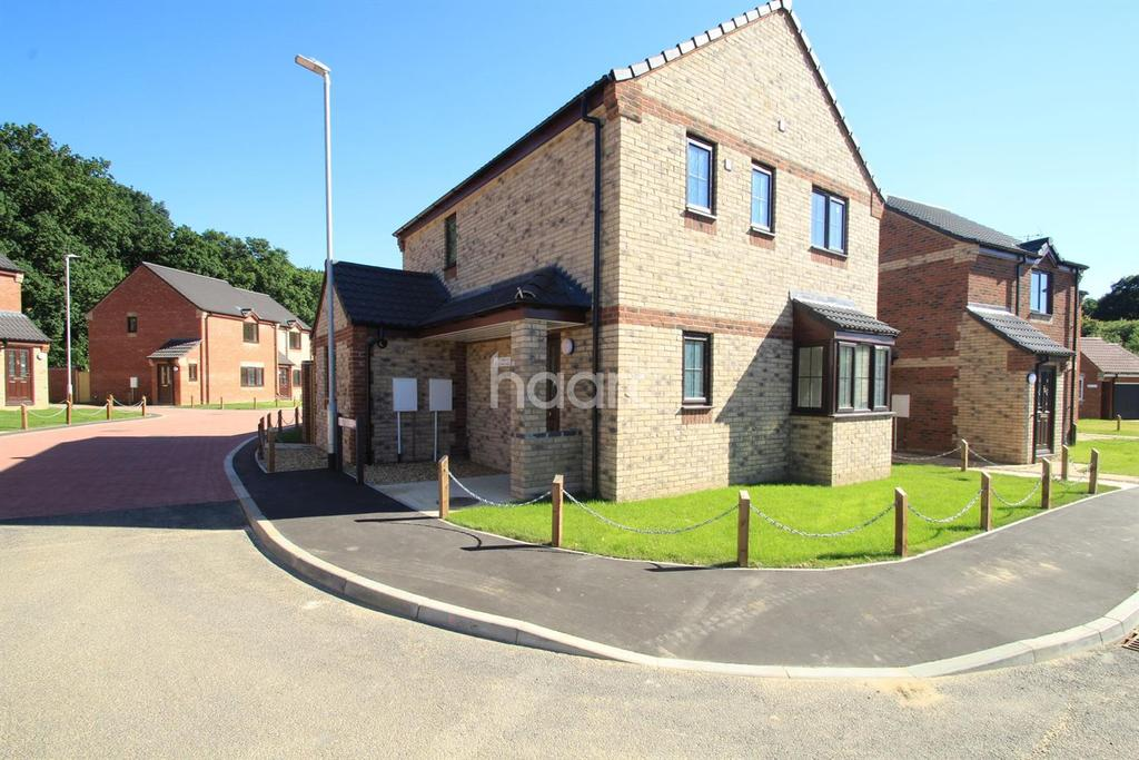 3 Bedrooms Detached House for sale in Maple Drive, The Birches, Necton