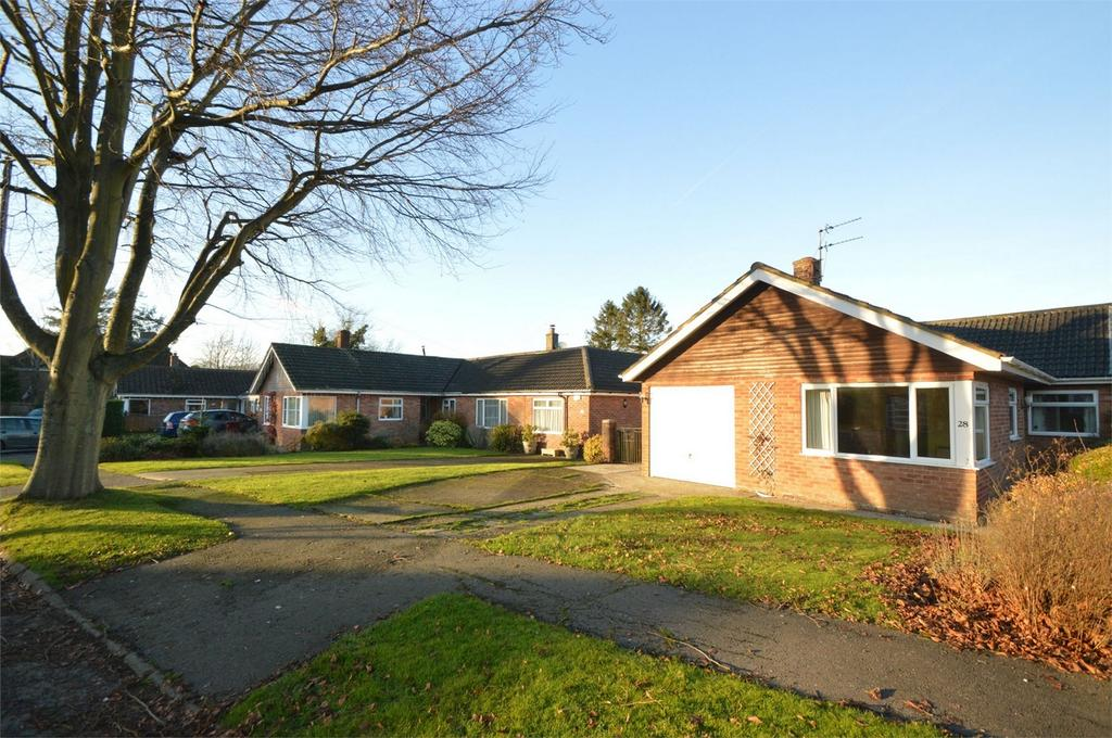 3 Bedrooms Semi Detached Bungalow for sale in South Acre, South Harting, PETERSFIELD, West Sussex