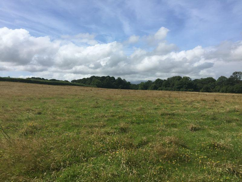 Land Commercial for sale in Spreyton, Crediton