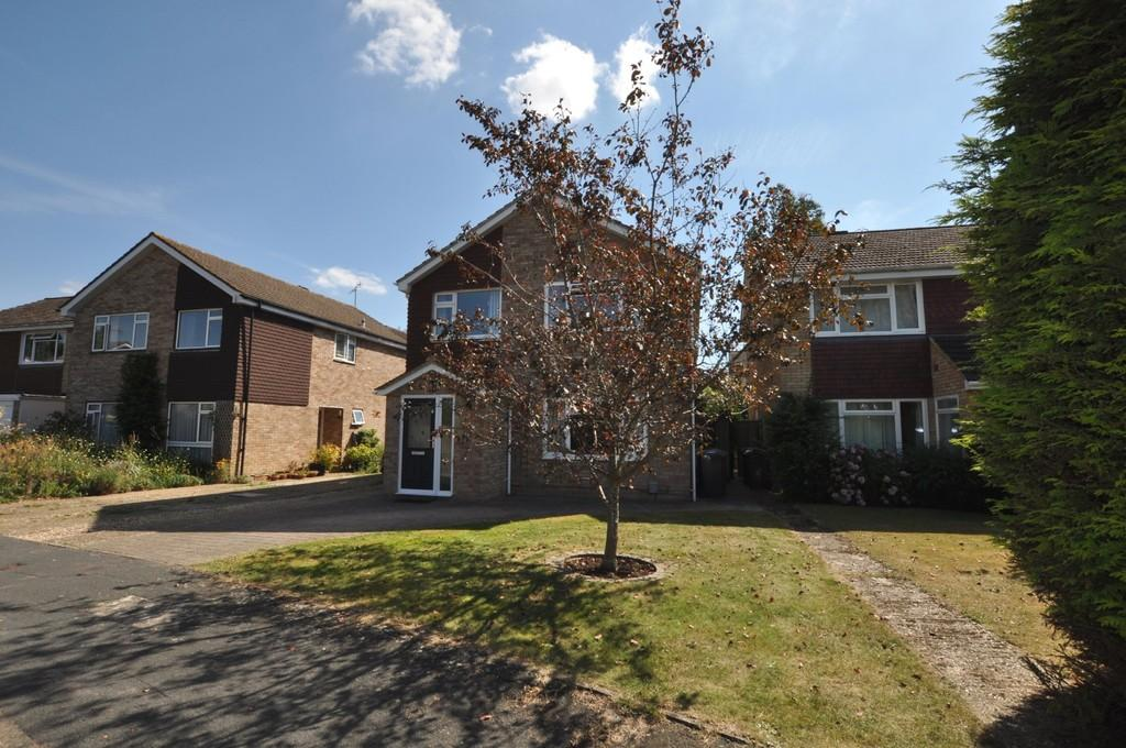 4 Bedrooms Detached House for sale in Napier Gardens, Guildford