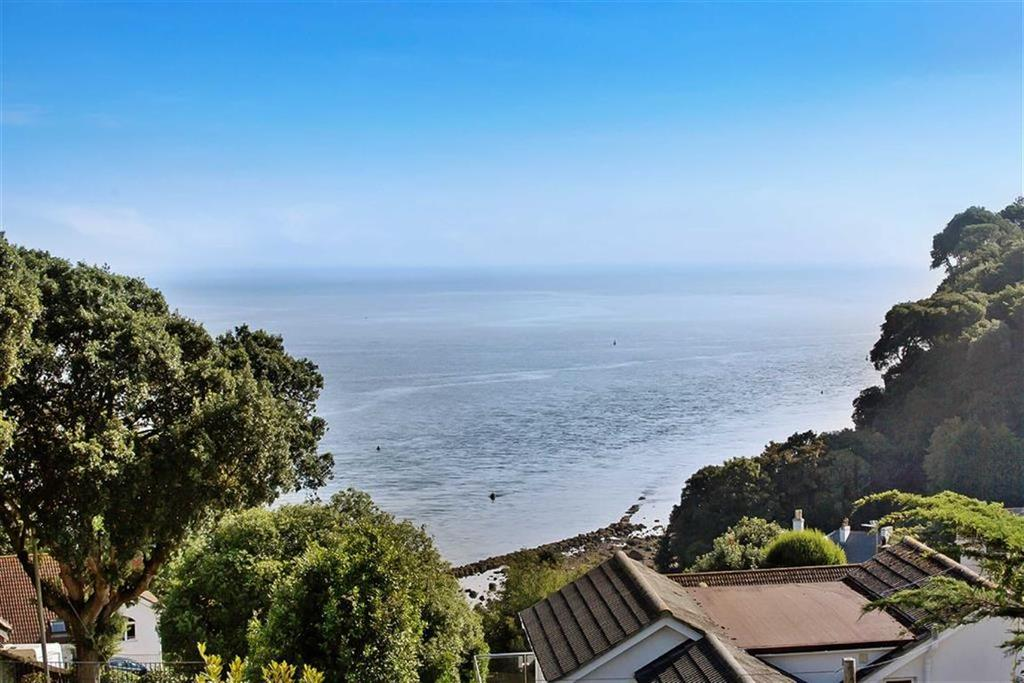 3 Bedrooms Detached House for sale in Horse Lane, Shaldon, Devon, TQ14