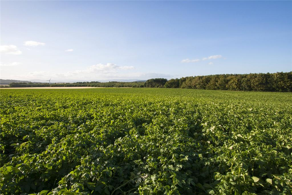Land Commercial for sale in Lot 1 - Land At Mains Of Kirkbuddo, Forfar, Angus, DD8