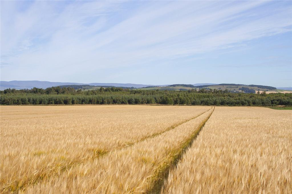 Land Commercial for sale in Lot 2 - Land At Mains Of Kirkbuddo, Forfar, Angus, DD8