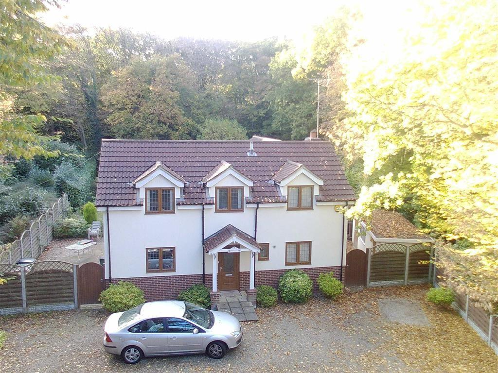 4 Bedrooms Chalet House for sale in Hyde Lane, Danbury Chelmsford, Essex
