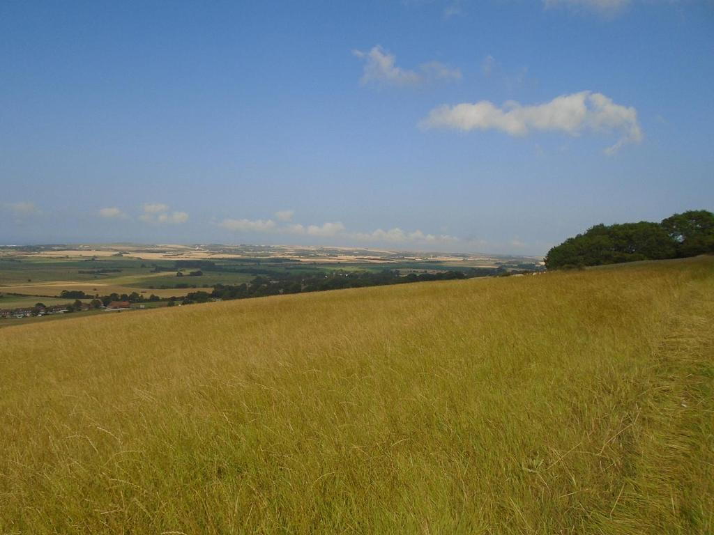 Land Commercial for sale in 37.04 Ac Grassland, Flixton, Scarborough