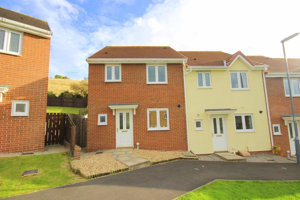 3 Bedrooms End Of Terrace House for sale in Hilltop Walk, Langley Park, Durham