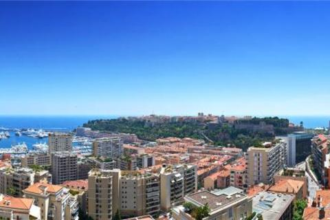 2 bedroom apartment  - Above The Port Hercule