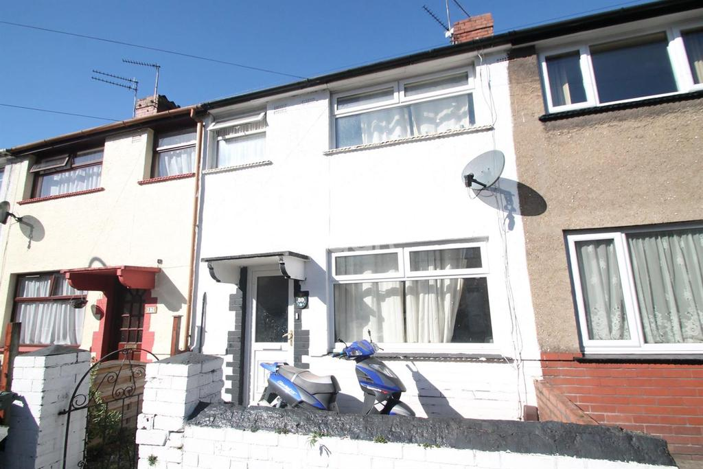 3 Bedrooms Terraced House for sale in Ailesbury Street, newport
