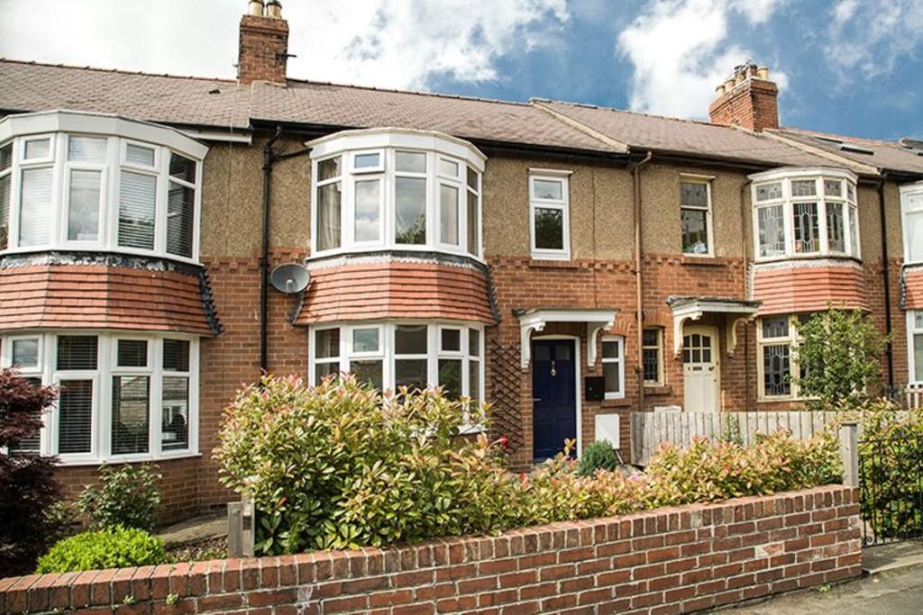 3 Bedrooms Terraced House for sale in Meadowfield Terrace, Stocksfield