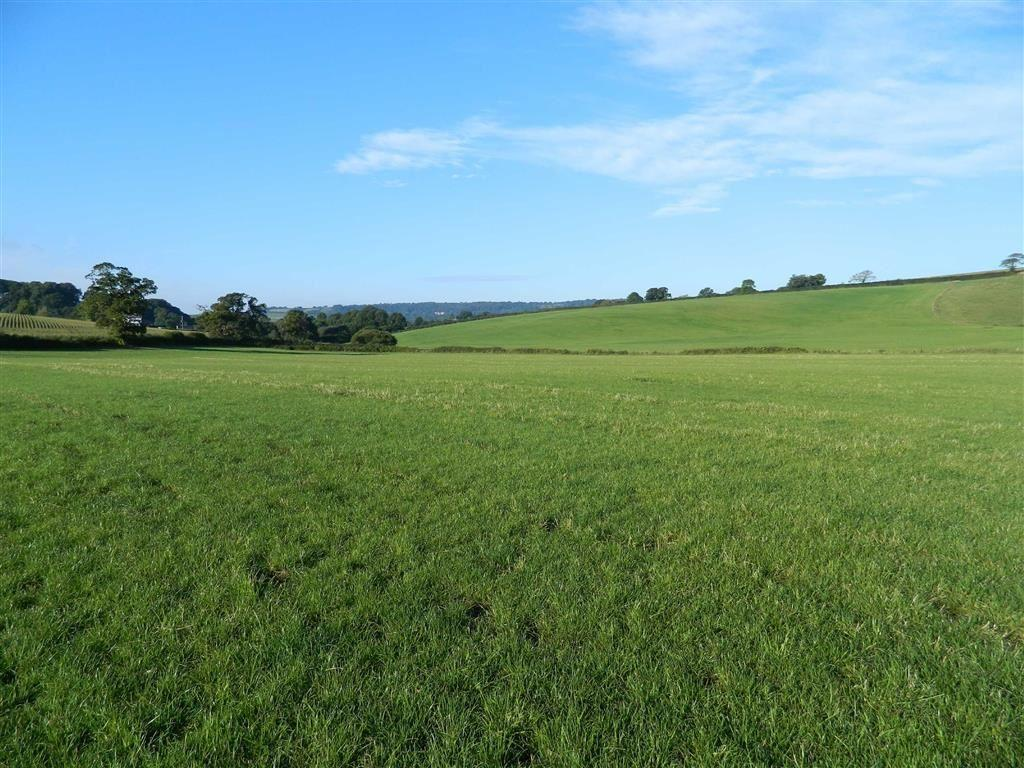 Land Commercial for sale in Wootton Fitzpaine, Bridport, Dorset, DT6