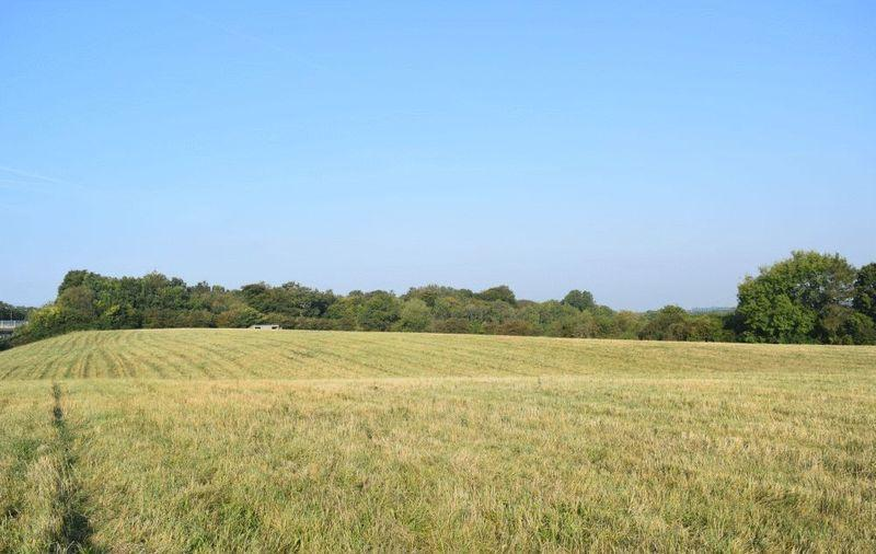 Land Commercial for sale in Margery Wood Lane, Tadworth
