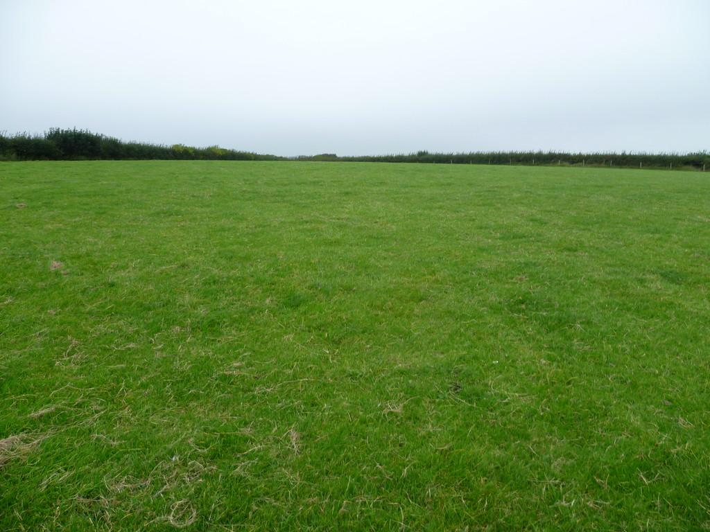 Land Commercial for sale in Approximately 25.49 Acres of Land at Gileston, Vale of Glamorgan, CF62 4JA