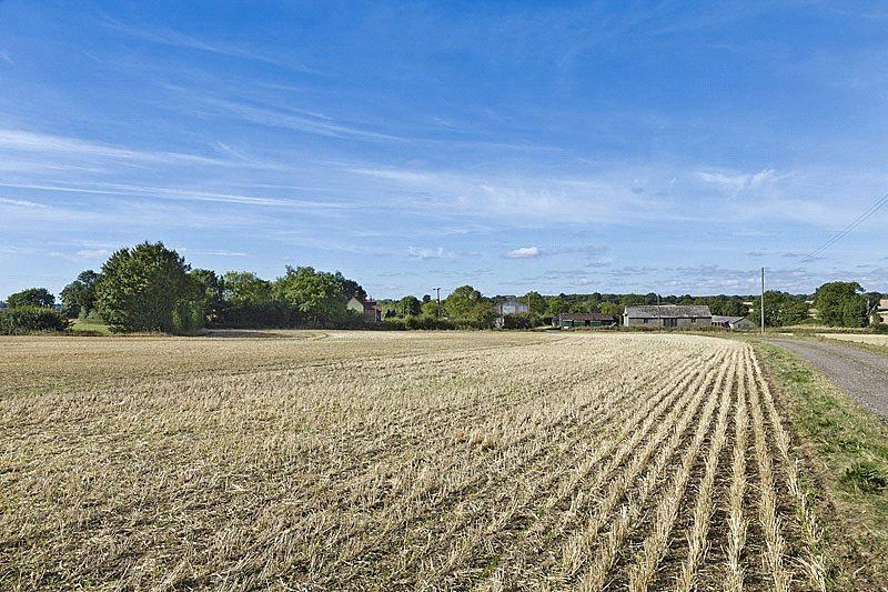 Land Commercial for sale in Foxearth, Sudbury, Suffolk