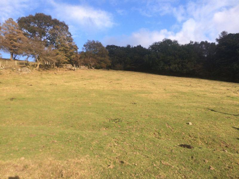Land Commercial for sale in 11.43 Acres of Pasture Land, Hendre Fields, Ynysybwl CF37 3LS