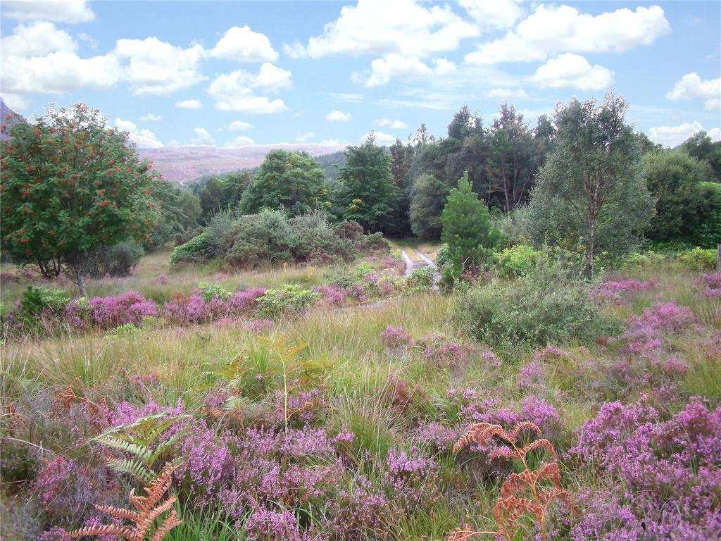Land Commercial for sale in Strathcarron, Ross-Shire