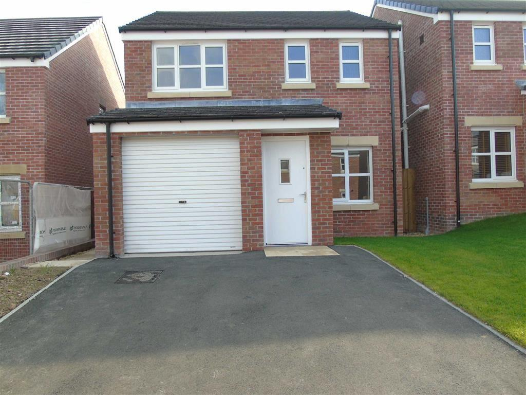 3 Bedrooms Detached House for sale in Dan Y Cwarre, Carway, Llanelli
