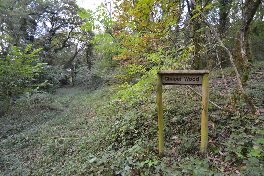 Land Commercial for sale in Chapel Wood, Lanivet