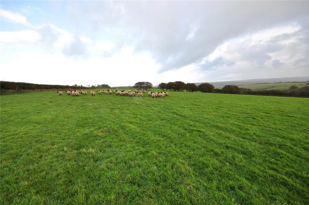 Land Commercial for sale in Caffyns Cross, Lynton, Devon, EX35