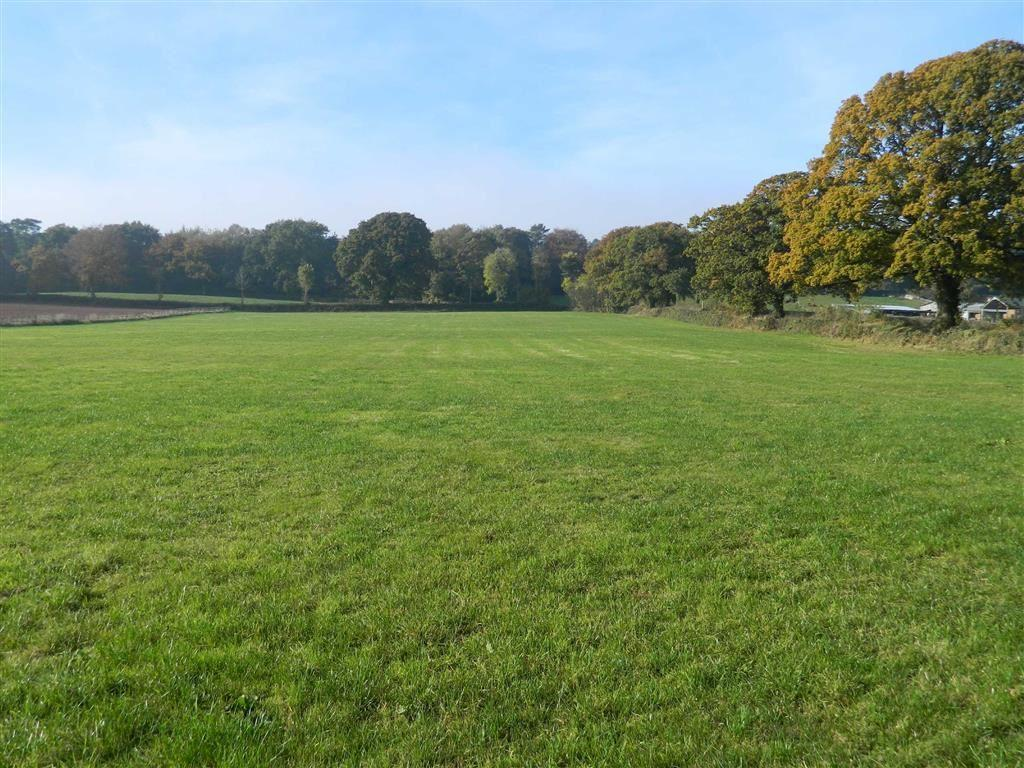Land Commercial for sale in Kentisbeare, Cullompton, Devon, EX15