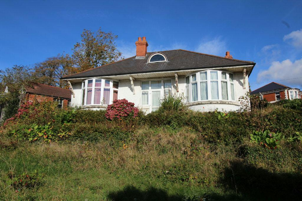 3 Bedrooms Detached House for sale in Eveswell Park Road, Newport