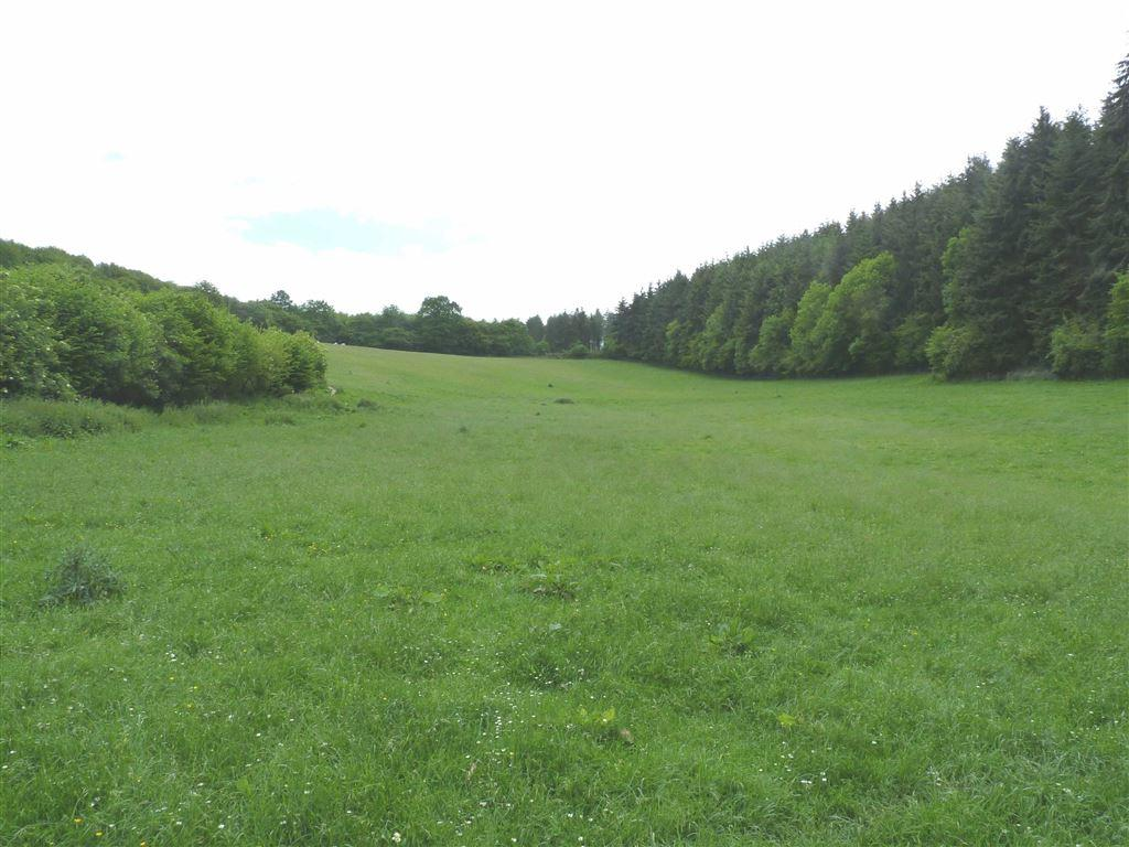 Land Commercial for sale in Upper Dormington, Hereford