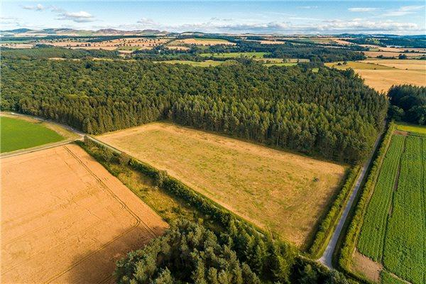 Land Commercial for sale in Oakwood, Ballathie Farm, By Murthly, Perth, Perthshire, PH1