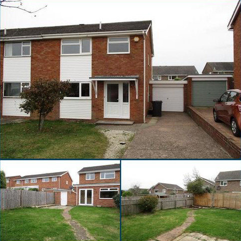 3 bedroom semi-detached house to rent - Lime Grove, Exmouth EX8