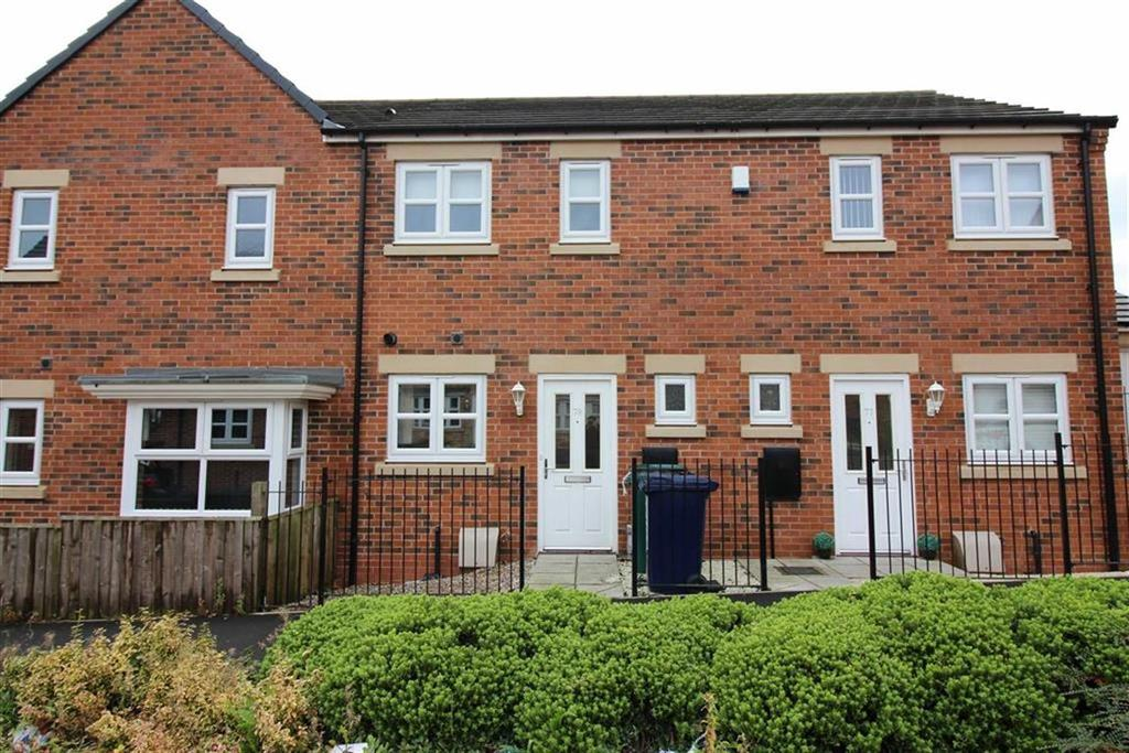 2 Bedrooms Terraced House for sale in Wyedale Way, Newcastle Upon Tyne, NE6