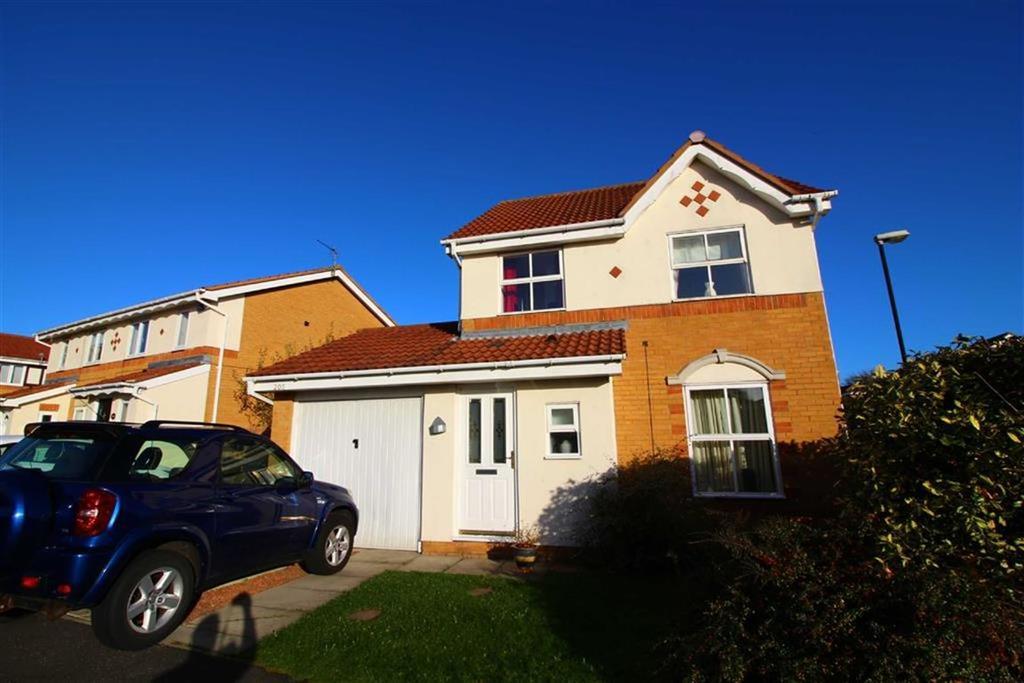3 Bedrooms Detached House for sale in Gardner Park, North Shields