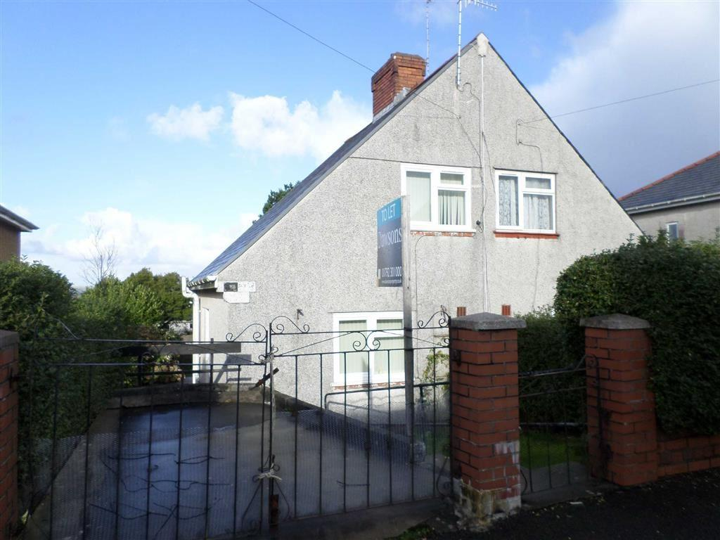 2 Bedrooms Semi Detached House for sale in Goronwy Road, Swansea, SA2