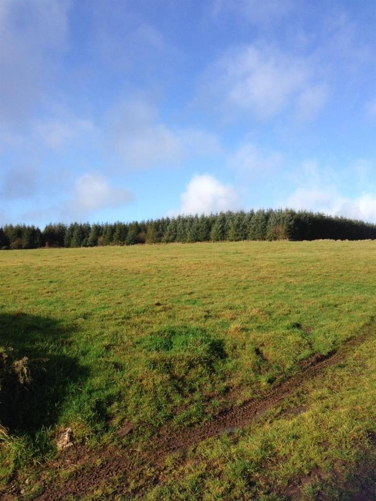Land Commercial for sale in Cwmduad, Carmarthen