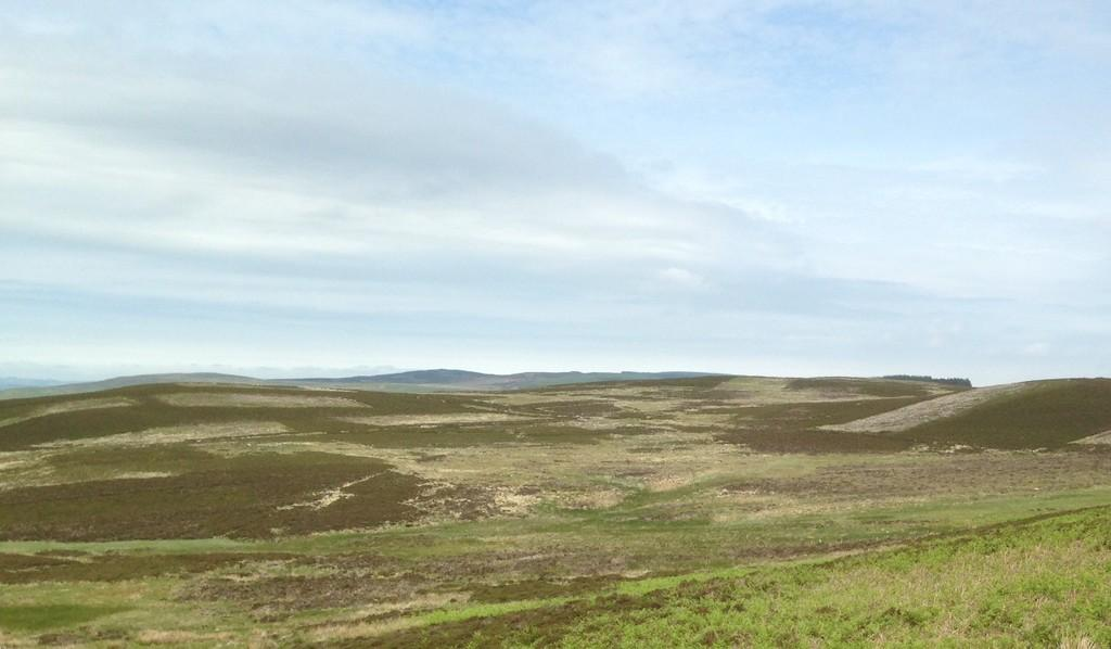 Land Commercial for sale in Land at Benshaw Moor, Elsdon