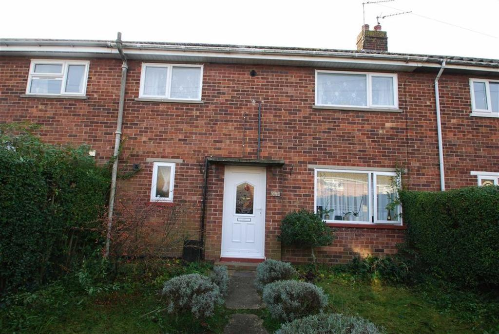 3 Bedrooms Terraced House for sale in Wellington Road, Boston