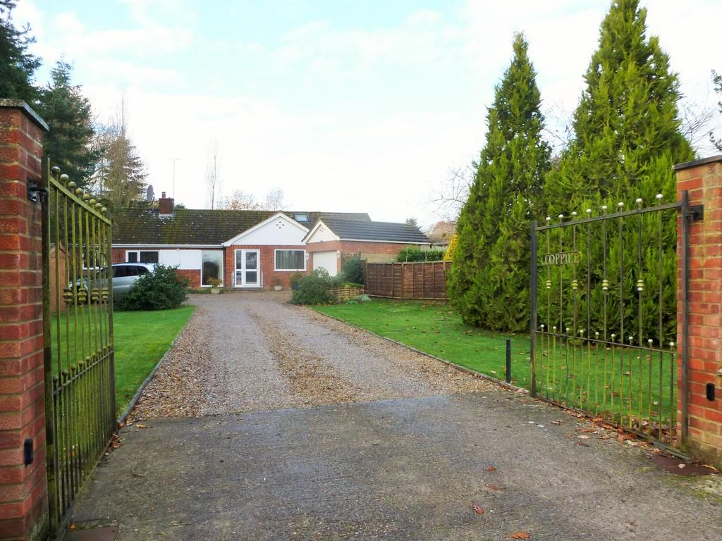 3 Bedrooms Detached Bungalow for sale in Holgate Road, White Horse Common