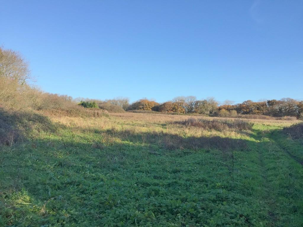 Land Commercial for sale in Approx 7.94 Acres of Land at Penyturnpike Road, Llandough. Penarth. Vale of Glamorgan