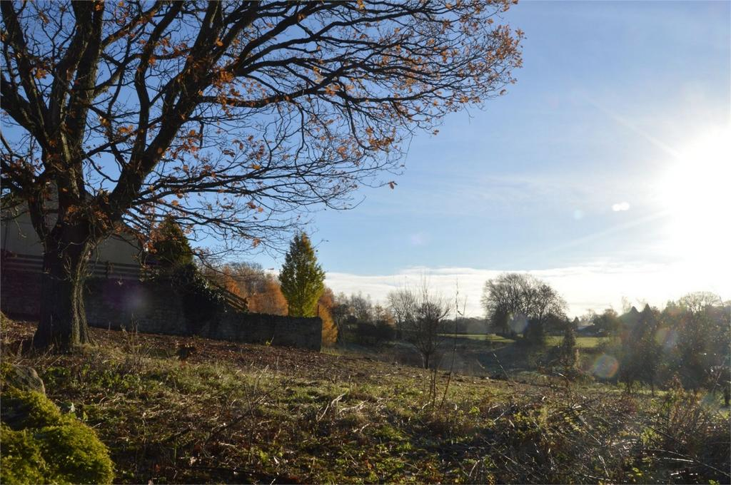 3 Bedrooms Land Commercial for sale in Cotherstone, Barnard Castle, County Durham