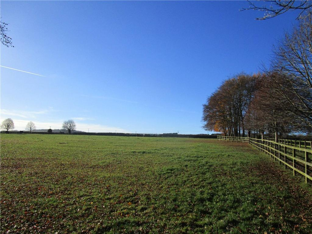 Equestrian Facility Character Property