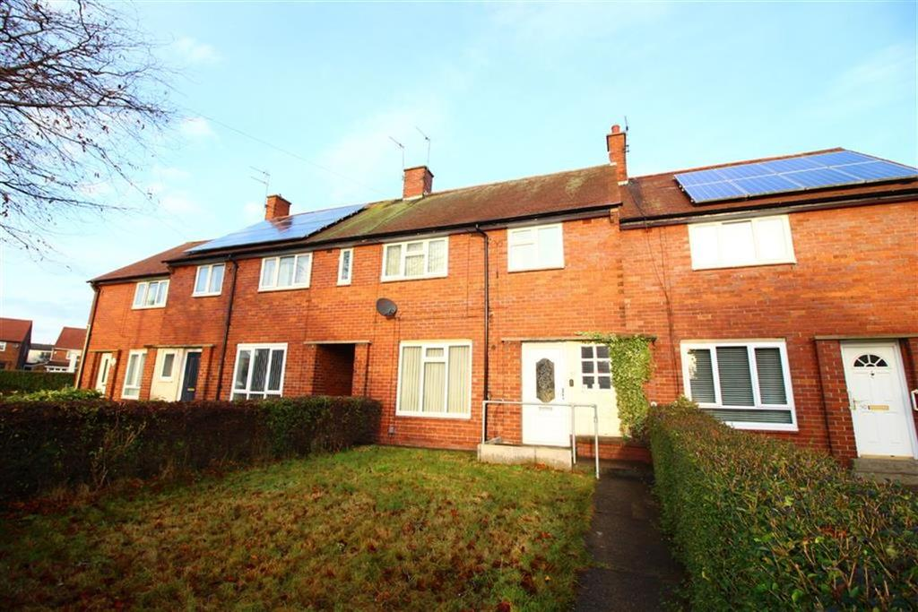 3 Bedrooms Terraced House for sale in Netherton Avenue, North Shields