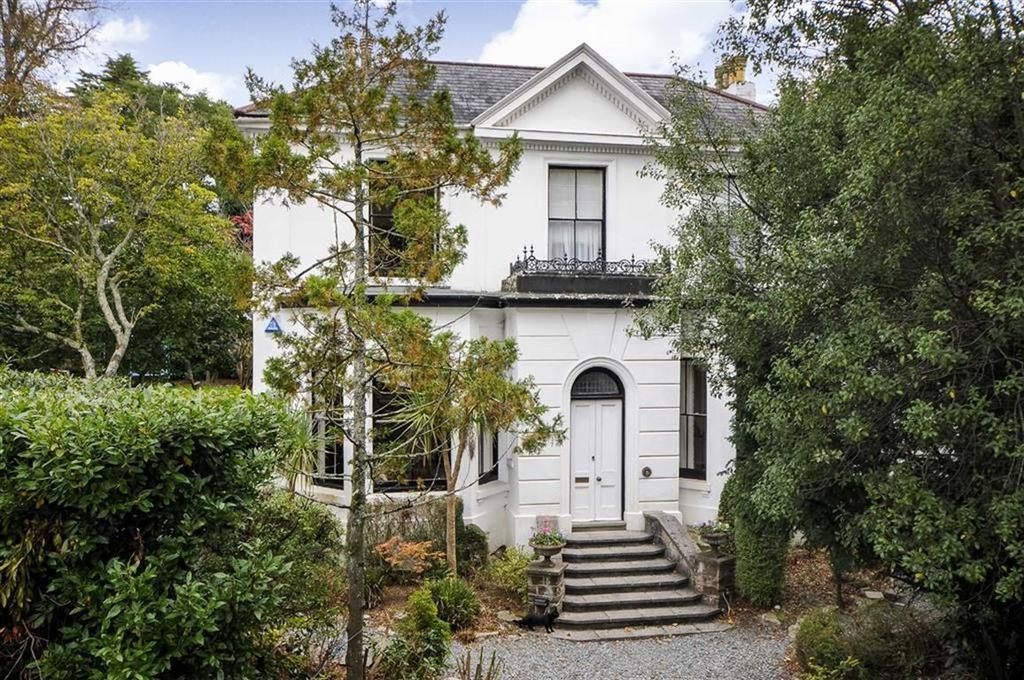 4 Bedrooms Detached House for sale in Seymour Road, Plymouth, PL3
