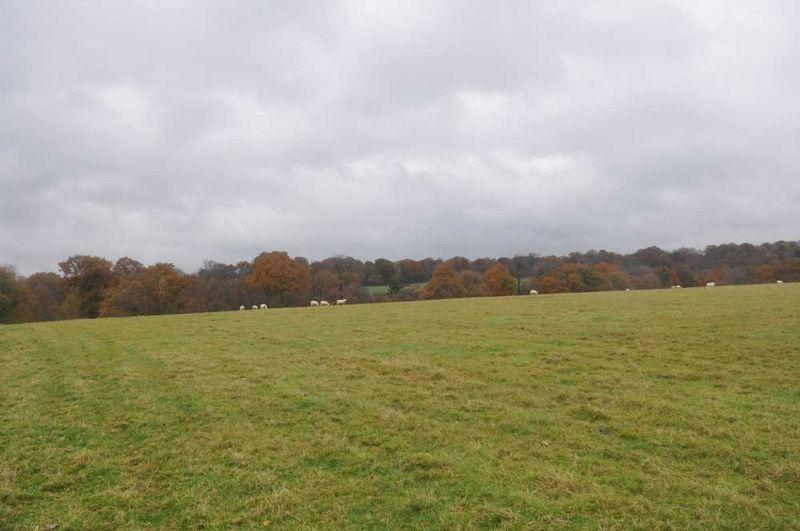 Land Commercial for sale in Lower Beeding, West Sussex
