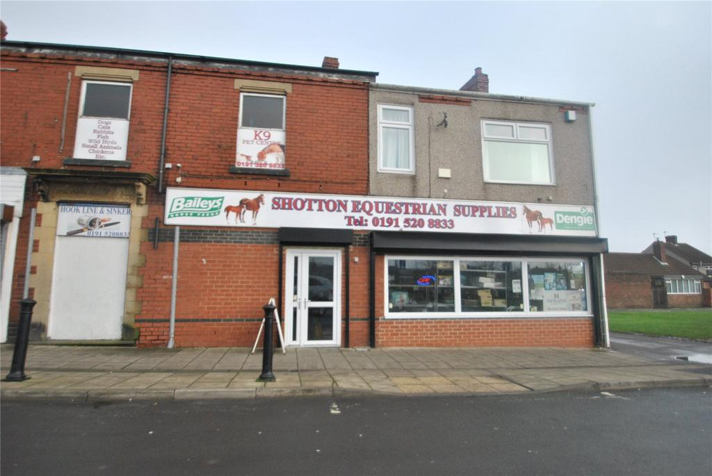 3 Bedrooms End Of Terrace House for sale in Potto Street, Shotton Colliery, DH6