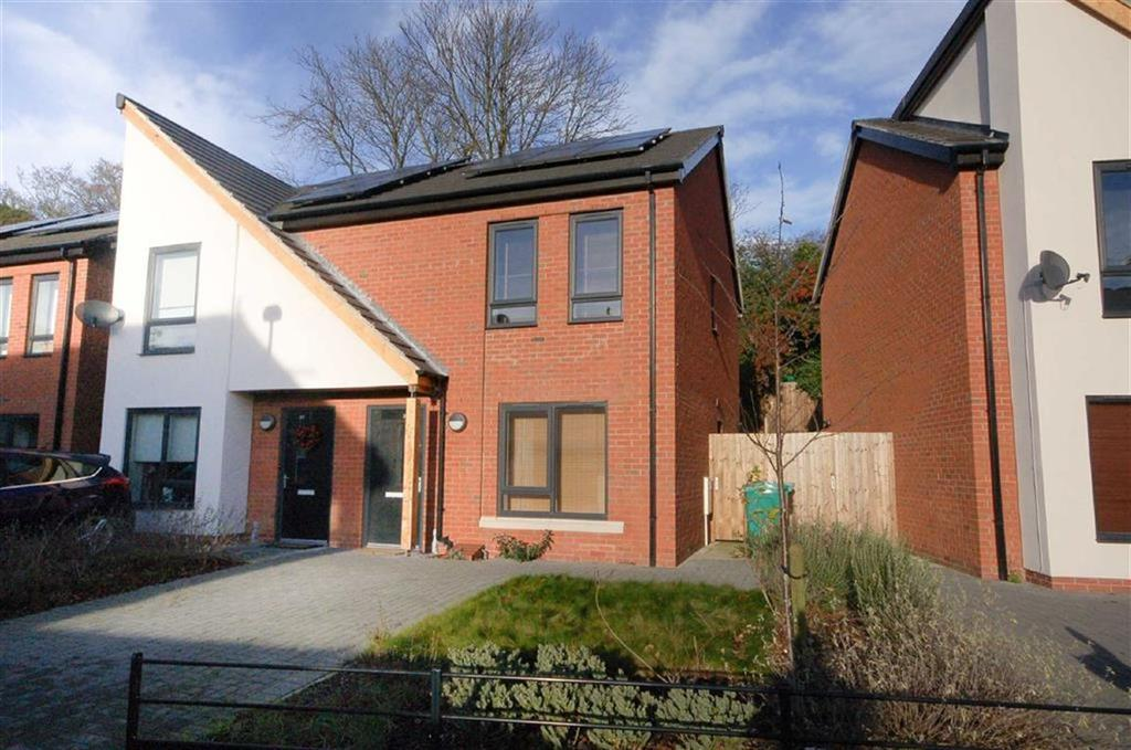 2 Bedrooms Semi Detached House for sale in Albert Road, Nottingham