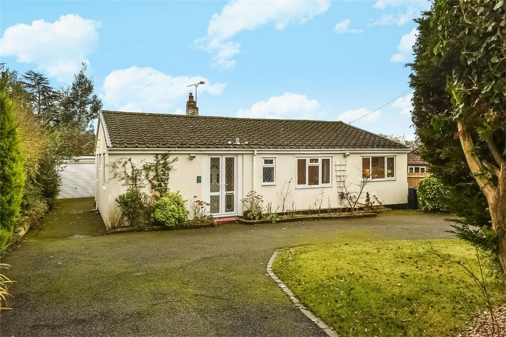 3 Bedrooms Detached Bungalow for sale in Four Marks, Alton, Hampshire
