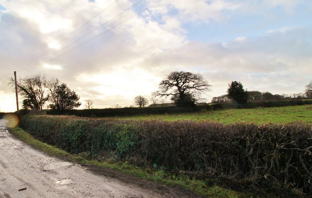Land Commercial for sale in Markington, Harrogate