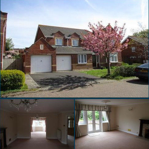 5 bedroom detached house to rent - Cranford View, Exmouth EX8